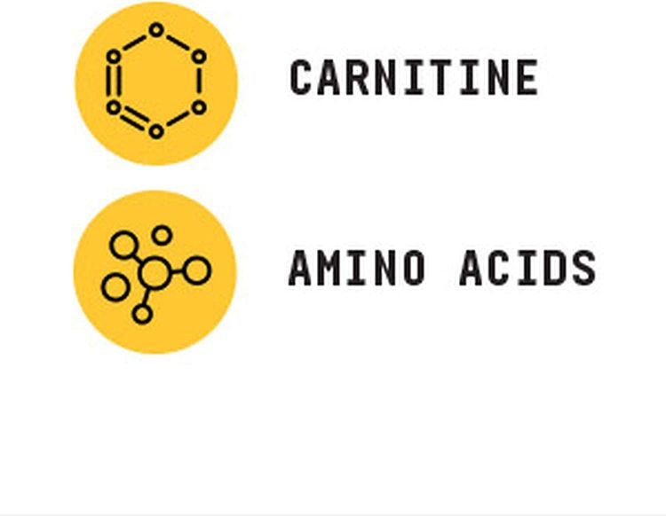 Beyond Raw Chemistry Labs L-Carnitine Powder   Fuels Exercise and Supports Recovery   30 Servings