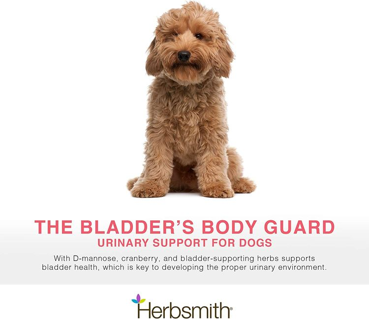 Herbsmith Bladder Care for Cats and Dogs – Maintains Urinary Health for Dogs and Cats – Dog and Cat Kidney Support
