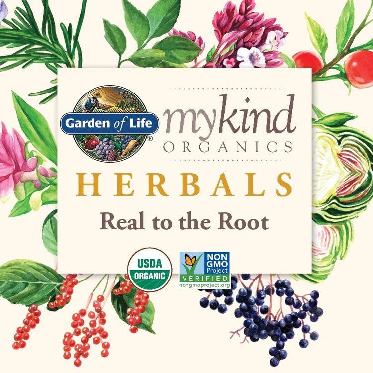 Garden of Life mykind Organics Oil of Oregano Seasonal Drops 1 fl oz (30 mL) Liquid, Concentrated Plant Based Immune Support - Alcohol Free, Organic, Non-GMO, Vegan & Gluten Free Herbal Supplements