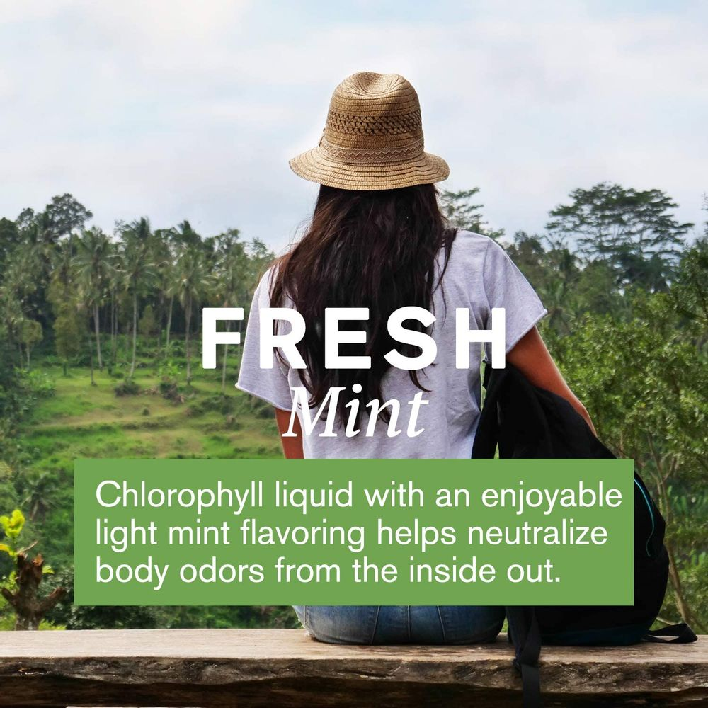 Nature's Sunshine Chlorophyll Liquid Extra Strength, 16 fl. oz, Kosher, Fresh Mint Chlorophyllin Assists Detoxification and Provides Intestinal and Digestive System Support