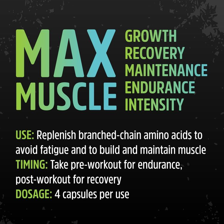 Zhou Muscle BCAA | Branched Chain Amino Acids | Build Muscle, Improve Recovery, and Increase Endurance | 30 Servings, 120 Capsules