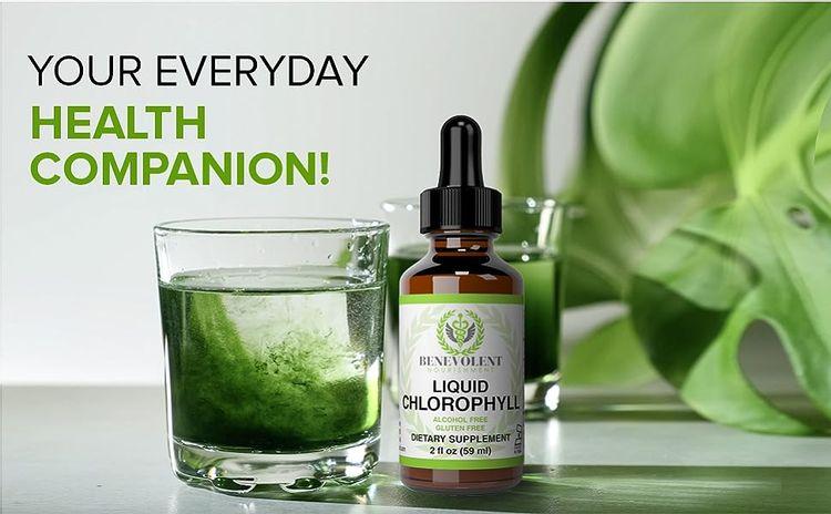 Benevolent Nourishment Liquid Chlorophyll Drops