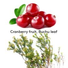 cranberry and buchu leaf