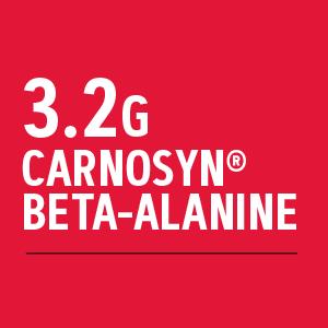 3.2g carnosyn bet-alanine