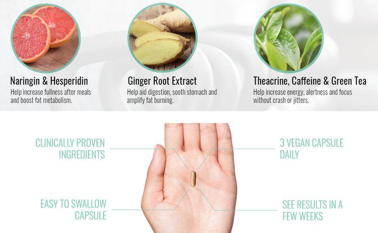 naringin hesperidin theacrine caffeine ginger root extract lose weight female male jitter crash pure