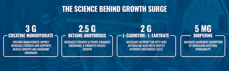 Creatine Monohydrate, Betaine Anhydrous, L-Carnitine L-Tartrate, and BioPerine