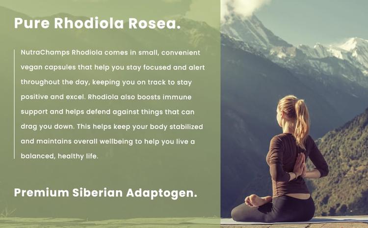 siberian rhodiola capsules herb