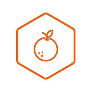 Hesperidin citrus flavonoid