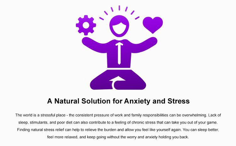 Kava Natural Anxiety Stress Reduction