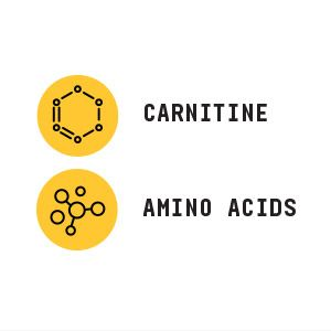 Includes carnitine and amino acids